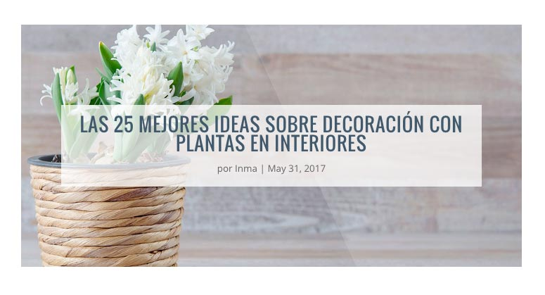 plantilla blog wordpress