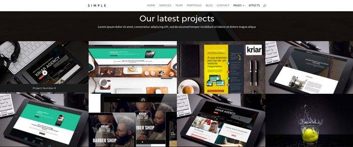 diseño web divi barato